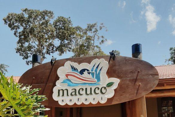 macucosafari-fozdoiguaçu2